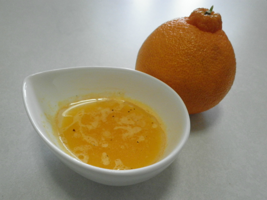 デコポン果汁のフレンチドレッシング