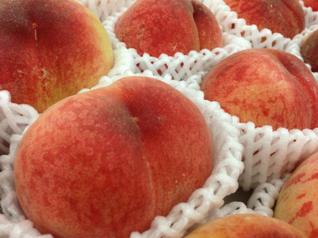 夏の果物!桃!
