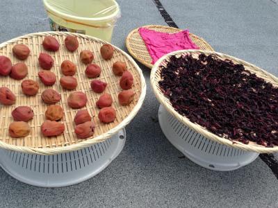 手作りの食べ物で暑さを乗りきろう!