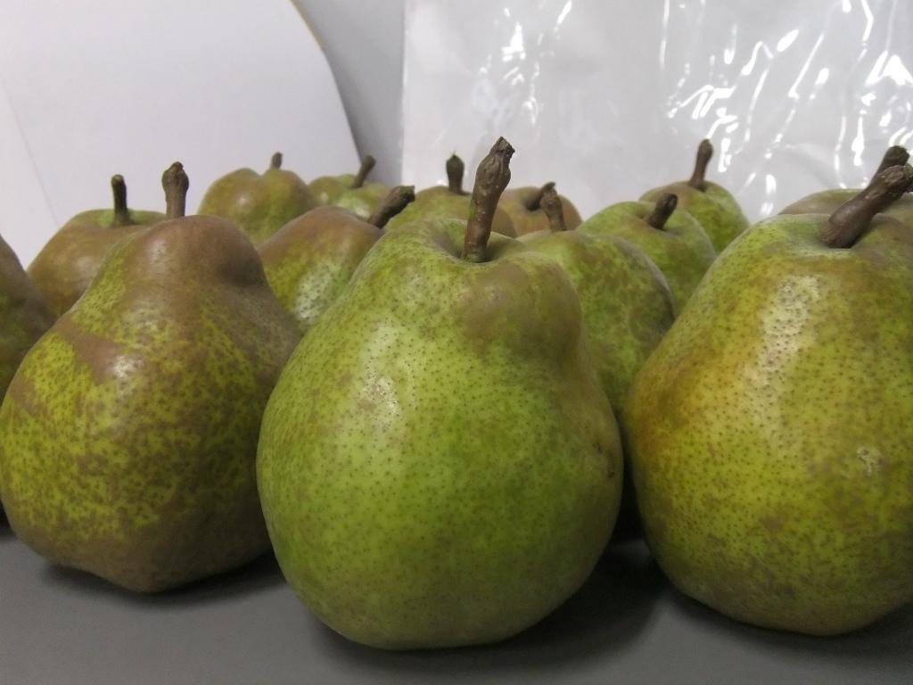 またまた西洋梨のレシピです。