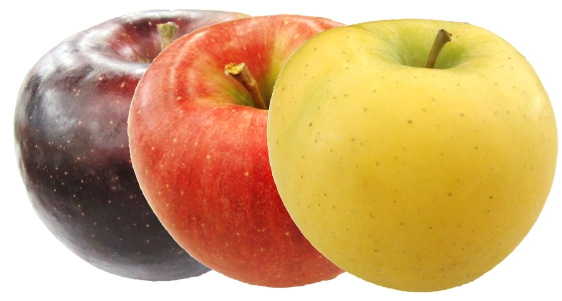 りんご三兄弟®