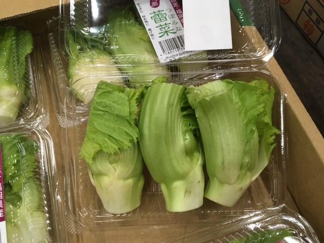 個性派野菜!入荷始まりました。