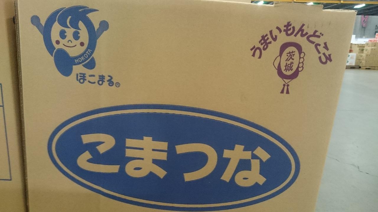茨城県産 小松菜!