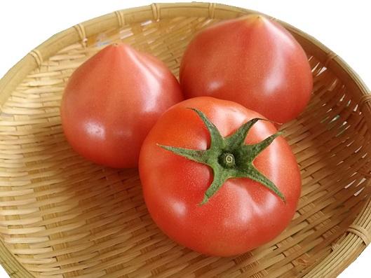 トマトの日(10月10日)