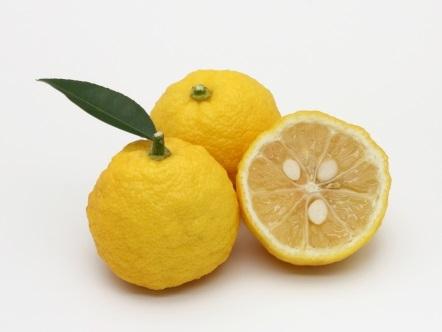 冬至の柚子