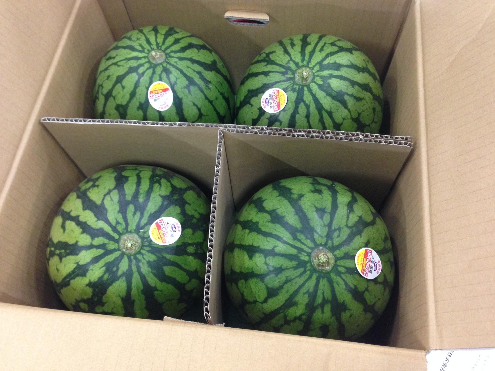 小玉西瓜のフルーツポンチ