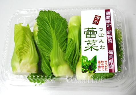 「蕾菜」をご存知でしょうか