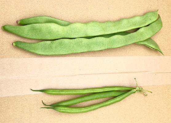 いんげん豆の日