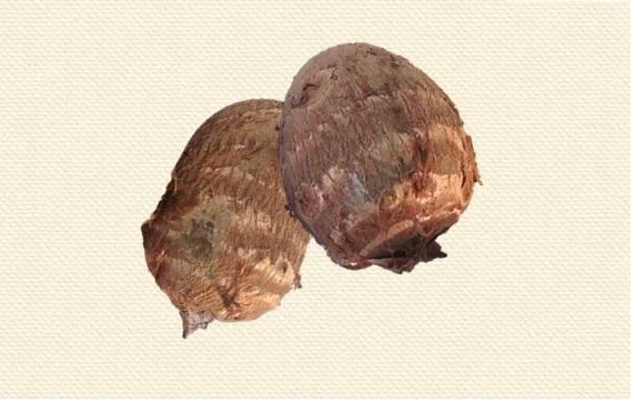 砂地で採れる里芋