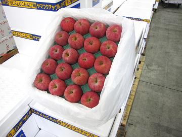 夏にぴったりのりんごレシピ